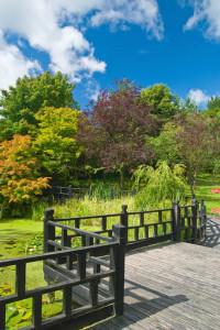 Garden decking Derby